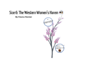 Size Six The Western Women's Harem Summary