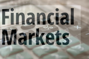 Different Types of Risks Bonds and Stocks in Financial Market Analysis