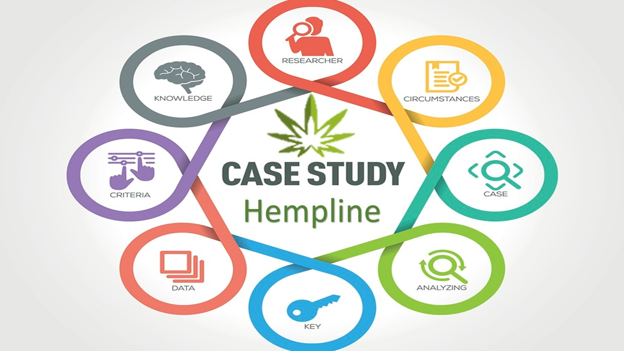 Hempline Company Case Study Analysis Summary