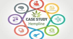 Hempline Company Case Study Analysis Summary
