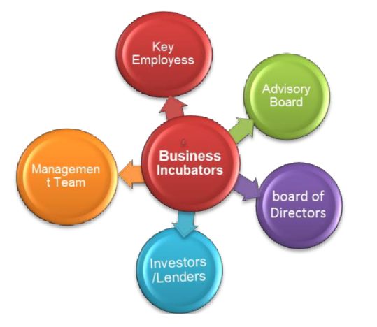 Importance of Business Incubation Process