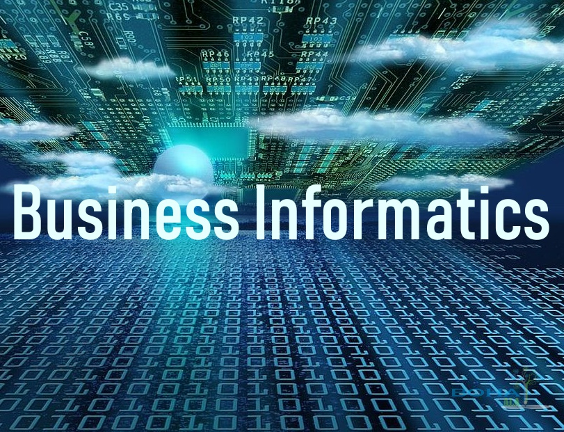 Business Informatics Rhetorical Analysis Essay Summary