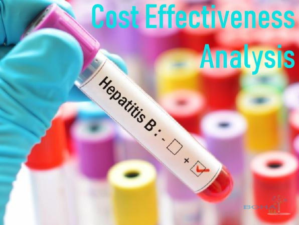 Cost Effectiveness Analysis of Hepatitis B Vaccination Program Summary