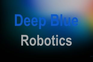 Deep Blue Robotics Security Threats Assessment