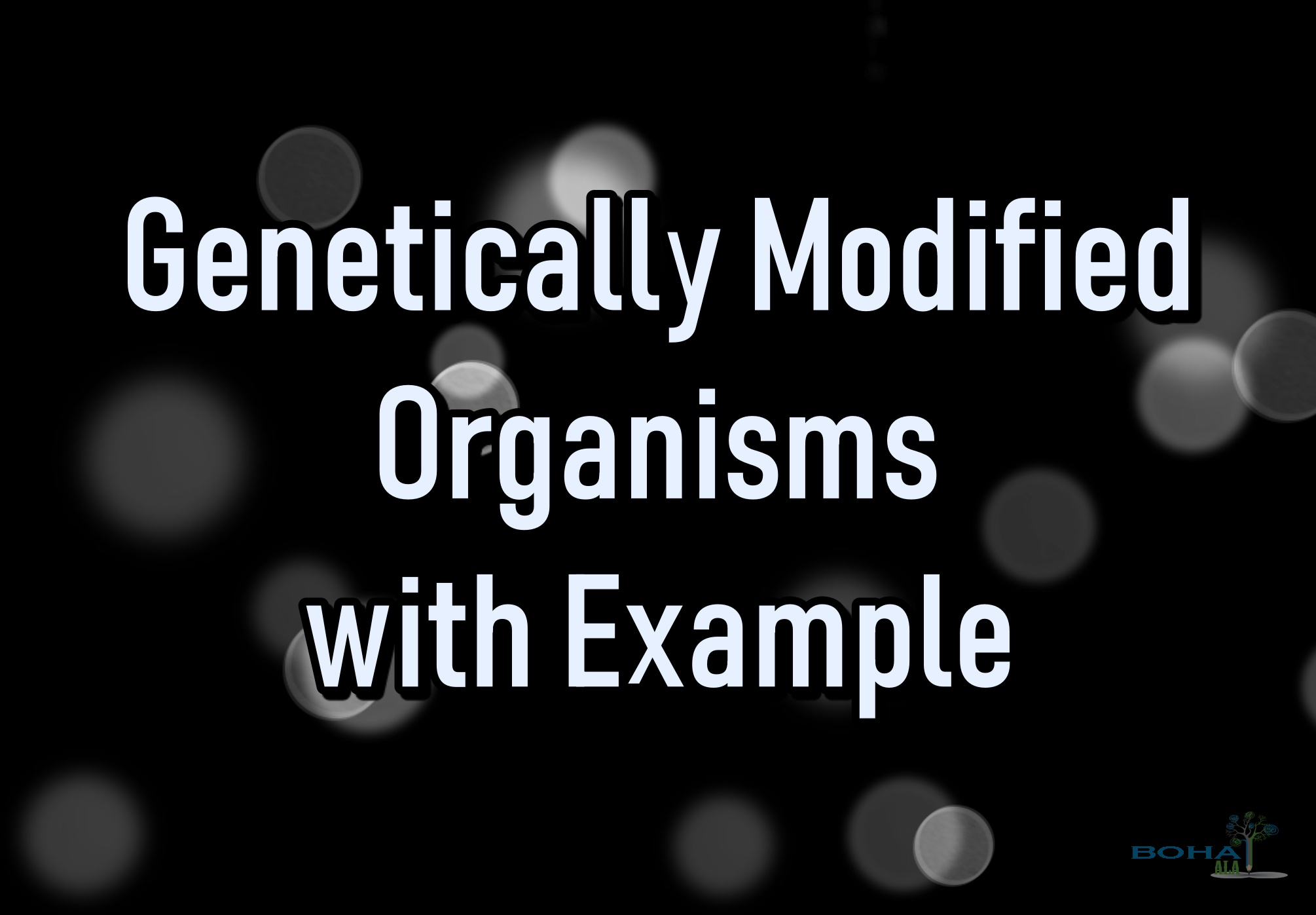 Genetically Modified Organisms with Example