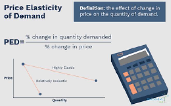 Price Elasticity Of Demand Examples Bohatala Com