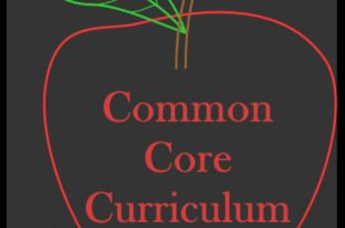Common Core Curriculum Impact on Educational Standard Article Review