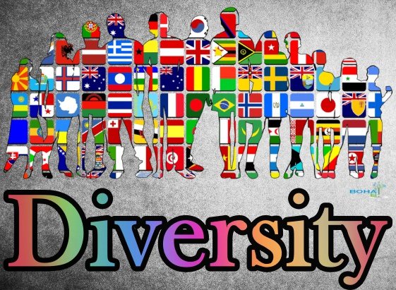 Diversity in Organization Example