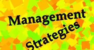 Management Strategy Terms of a Company