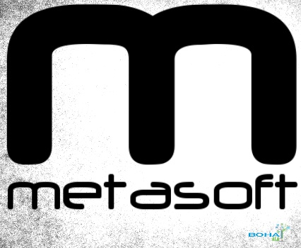 Cloud Architecture Implementation at Metasoft Solutions