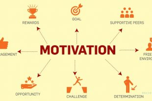 Impact of Employee Motivation on Organizational Performance