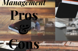 Pros and Cons of Management