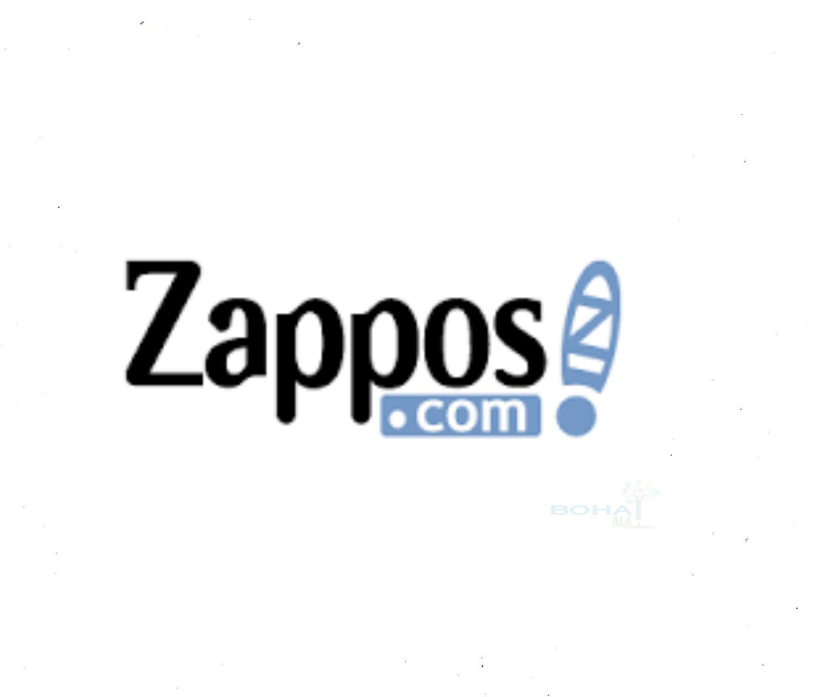 Zappos Case Study Analysis Summary