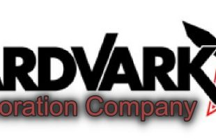 Aardvark Corporation Alternative Financing Options Project
