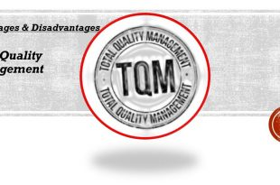 Advantages and Disadvantages of Total Quality Management