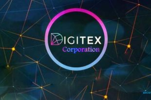 Digitex Corporation Case Study Analysis