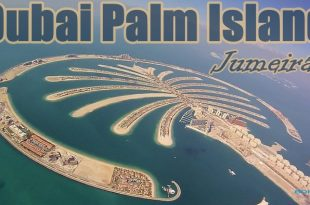 Dubai Palm Island Project Report