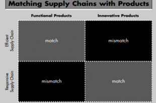 Fisher Model in the Supply Chain Matrix