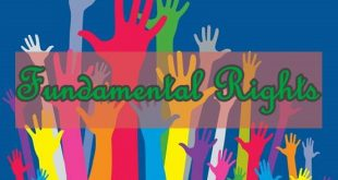 Fundamental Rights Article Review