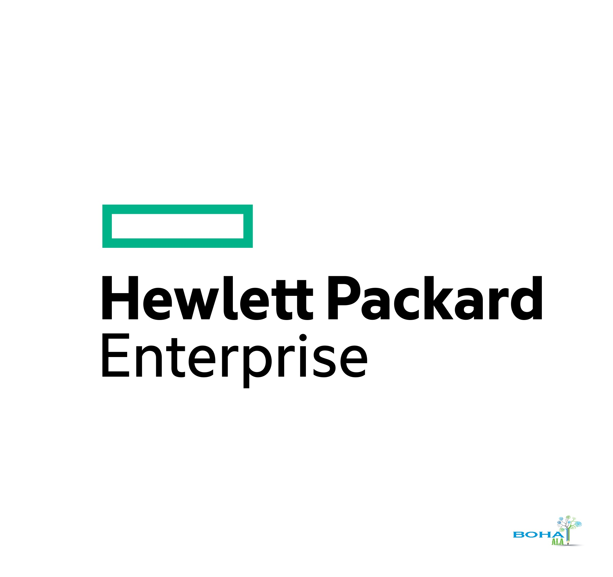 HP Hewlett Packard Enterprise and Distribution Overview Report