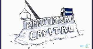 Paradigms of Developing Emotional Capital Research Paper