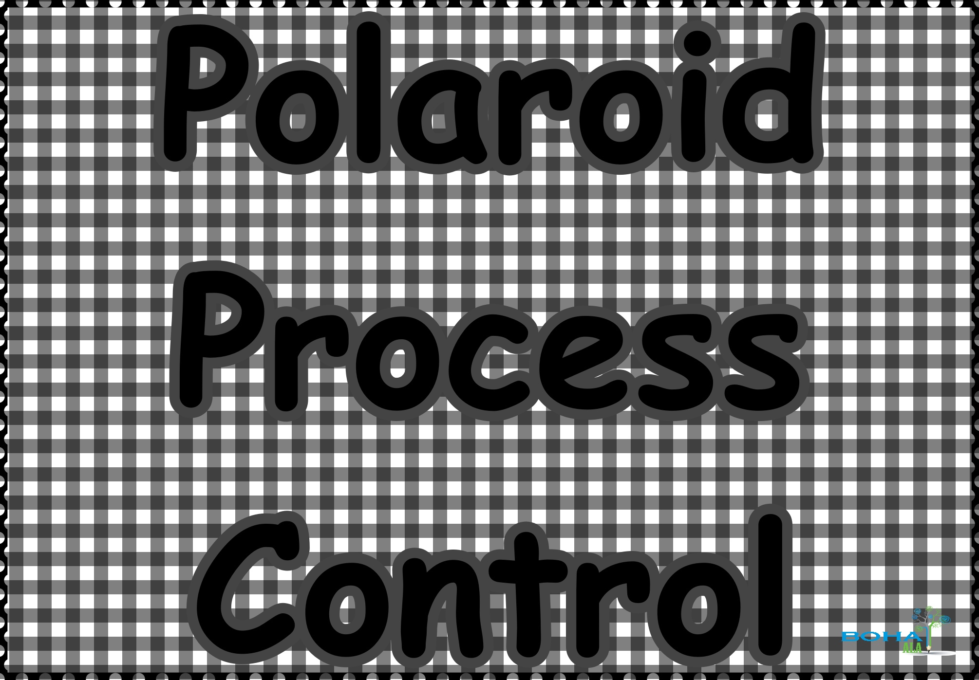 Polaroid Process Control Case Analysis