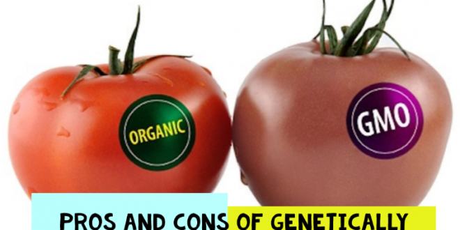 Genetically modified food research paper
