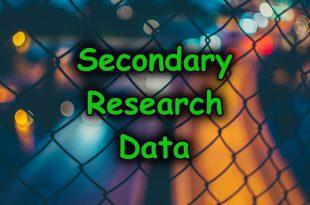 Secondary Data Marketing Research Paper Example