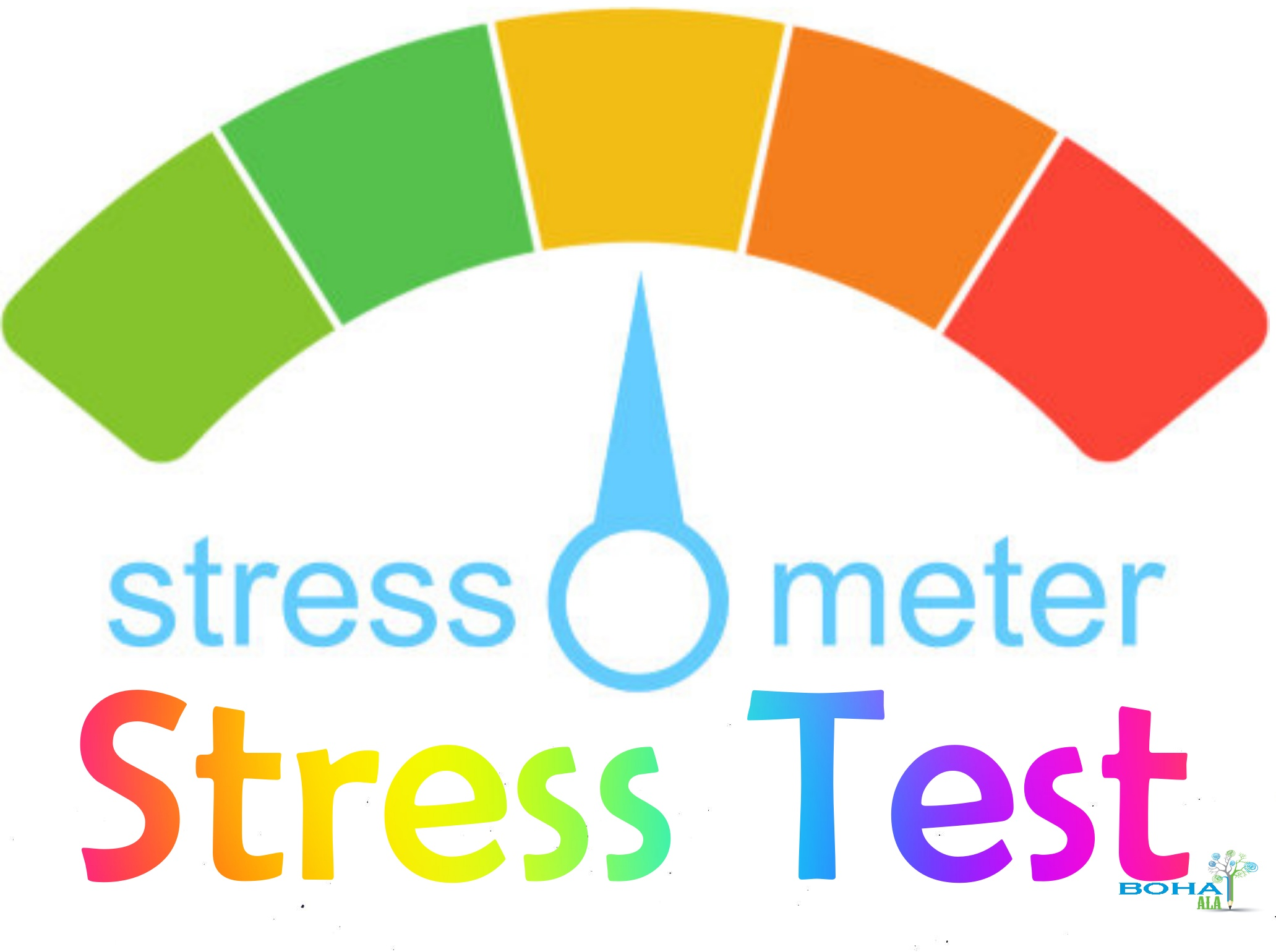 Stress Test Questions Example Risk Management Bohatala Com