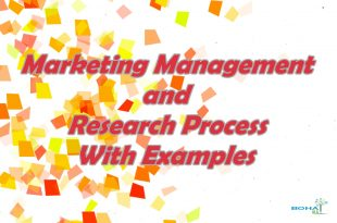 The Marketing Management and Research Process With Examples