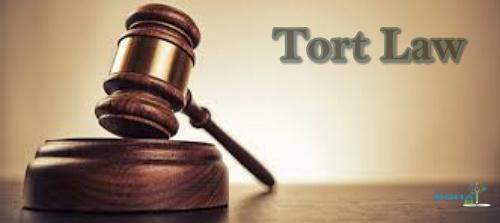 Tort Law Case