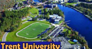 Trent University Canada Report Analysis