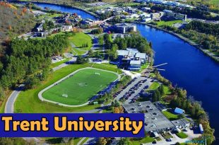 Trent University Canada Report Analysis