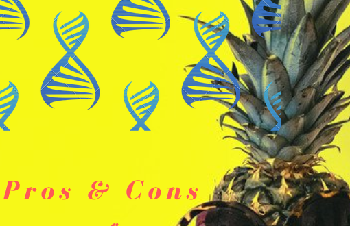Essay on the pros and cons of gmo