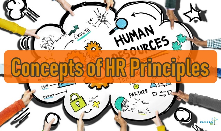 Understanding the Concepts of HR Principles