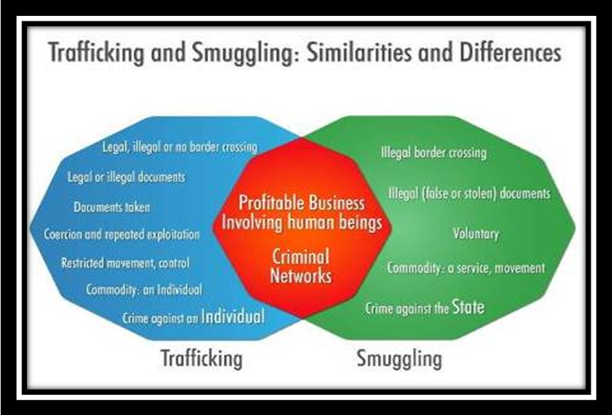 What is The Difference Between Smuggling and Trafficking