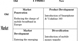 Vodafone International Marketing Strategy Research Paper