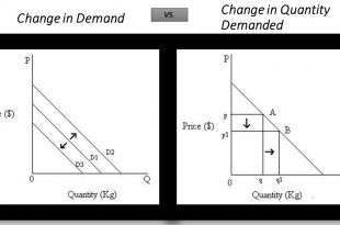 Change in Quantity Demanded Vs Change in Demand