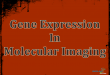 Gene Expression In Molecular Imaging