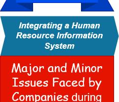 HRIS Implementation Case Study Summary Analysis