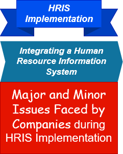 HRIS Implementation Case Study Summary Analysis