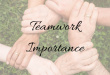 Why Teamwork is Important in the Workplace