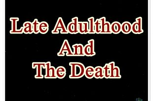 Late Adulthood And The Death