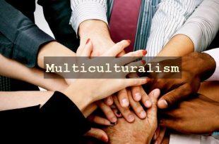 Multiculturalism in America Essay