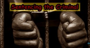 Sentencing the Criminal Corporation Case Study
