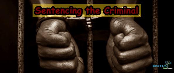 Sentencing the Criminal Corporation Case Study