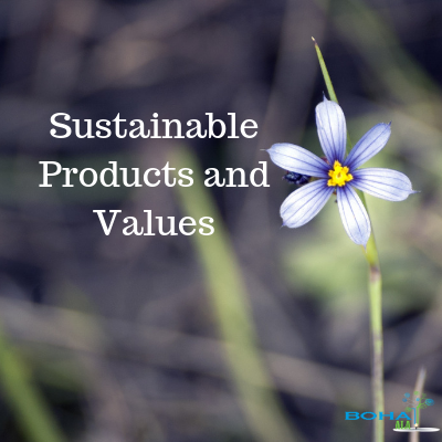 Total Values and Sustainable Products