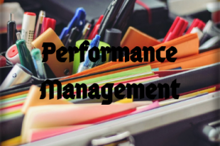 Understanding what is Performance Management