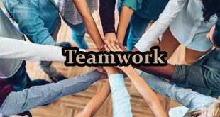What is Teamwork Article Review