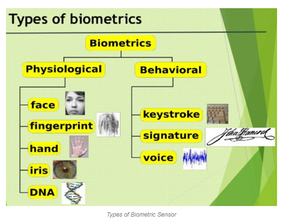 What is Biometric Authentication and Types of Biometrics